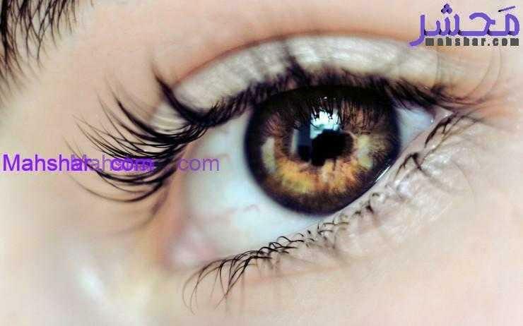برای تقویت چشم 6 نرمش برای تقویت چشم با حرکت دورانی