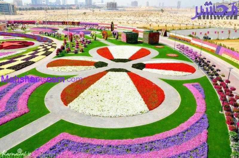 گل دبی1 1 49 باغ گل معجزه دبی | بزرگترین باغ گل دنیا