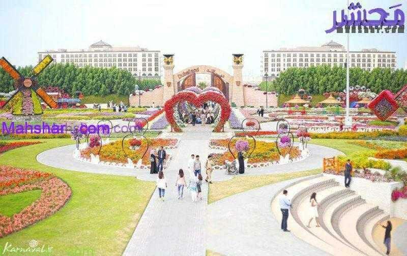 گل دبی50 15 باغ گل معجزه دبی | بزرگترین باغ گل دنیا