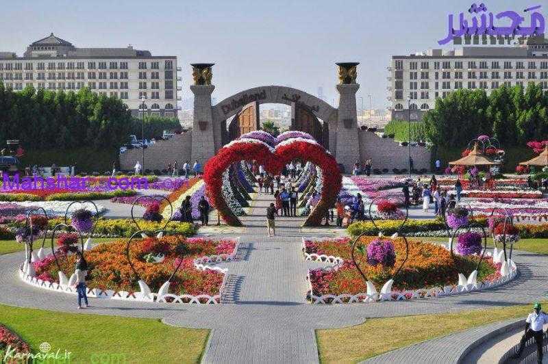 گل6 5 باغ گل معجزه دبی | بزرگترین باغ گل دنیا
