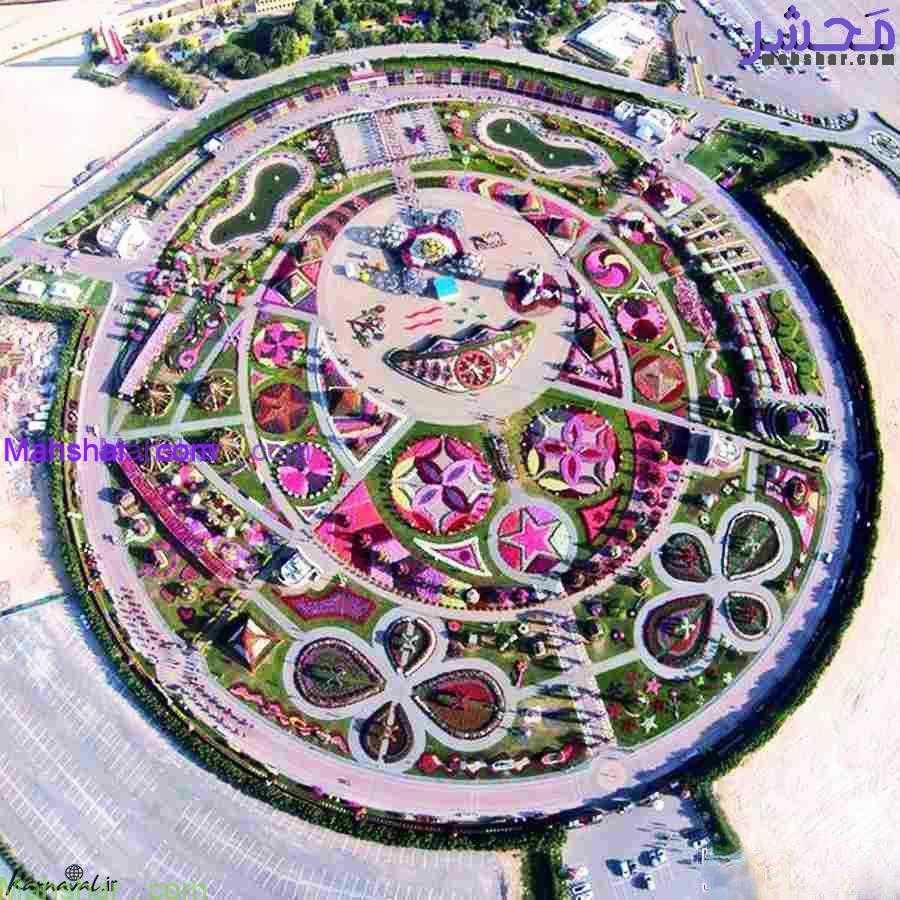 mirakel0 23 باغ گل معجزه دبی | بزرگترین باغ گل دنیا