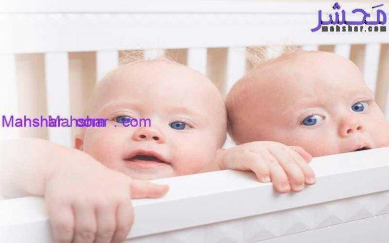 1 چگونه دوقلو باردار شویم؟