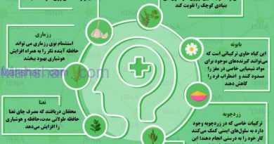 چه گیاهانی برای تقویت مغز مفید هستند؟