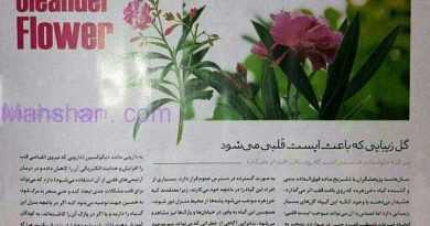 19 گل زیبایی که باعث ایست قلبی میشود!