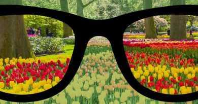 20 اگر از عینک استفاده میکنید رعایت این نکات را هرگز فراموش نکنید