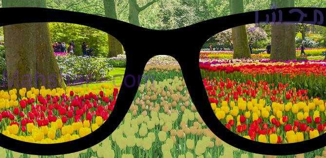 7 اگر از عینک استفاده میکنید رعایت این نکات را هرگز فراموش نکنید