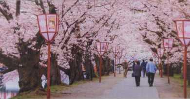 طبیعت ژاپن