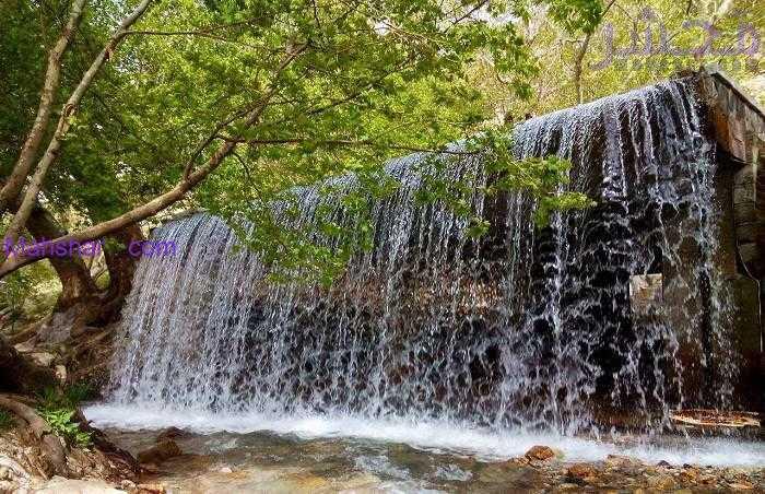 گیان 26 جنگل طبیعی همدان ، بهشت غرب کشور همچنان ناشناخته-جنگل گیان در کنار تپه تاریخی گیان با قدمتی بیش از 37 قرن قبل از تولد مسیح
