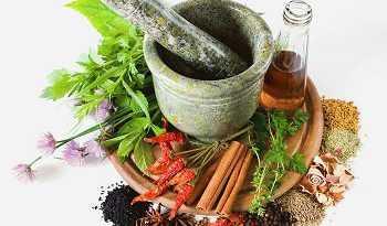 مسکن گیاهی در طب سنتی