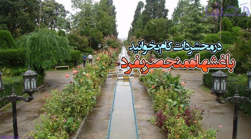 باغی برای ملت و عمارتی برای شاهان؛ جاذبه ای بی نظیر در ایران!
