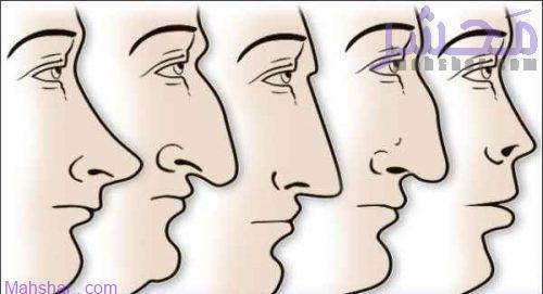 شخصیت شناسی از روی فرم بینی